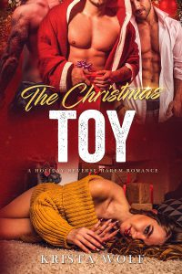 The Christmas Toy – A Holiday Reverse Harem Romance