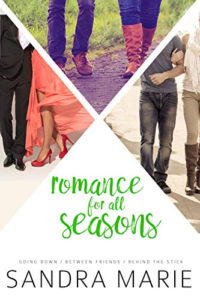 Romance for all Seasons Series Bundle