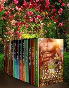 Shifter Dating Agency